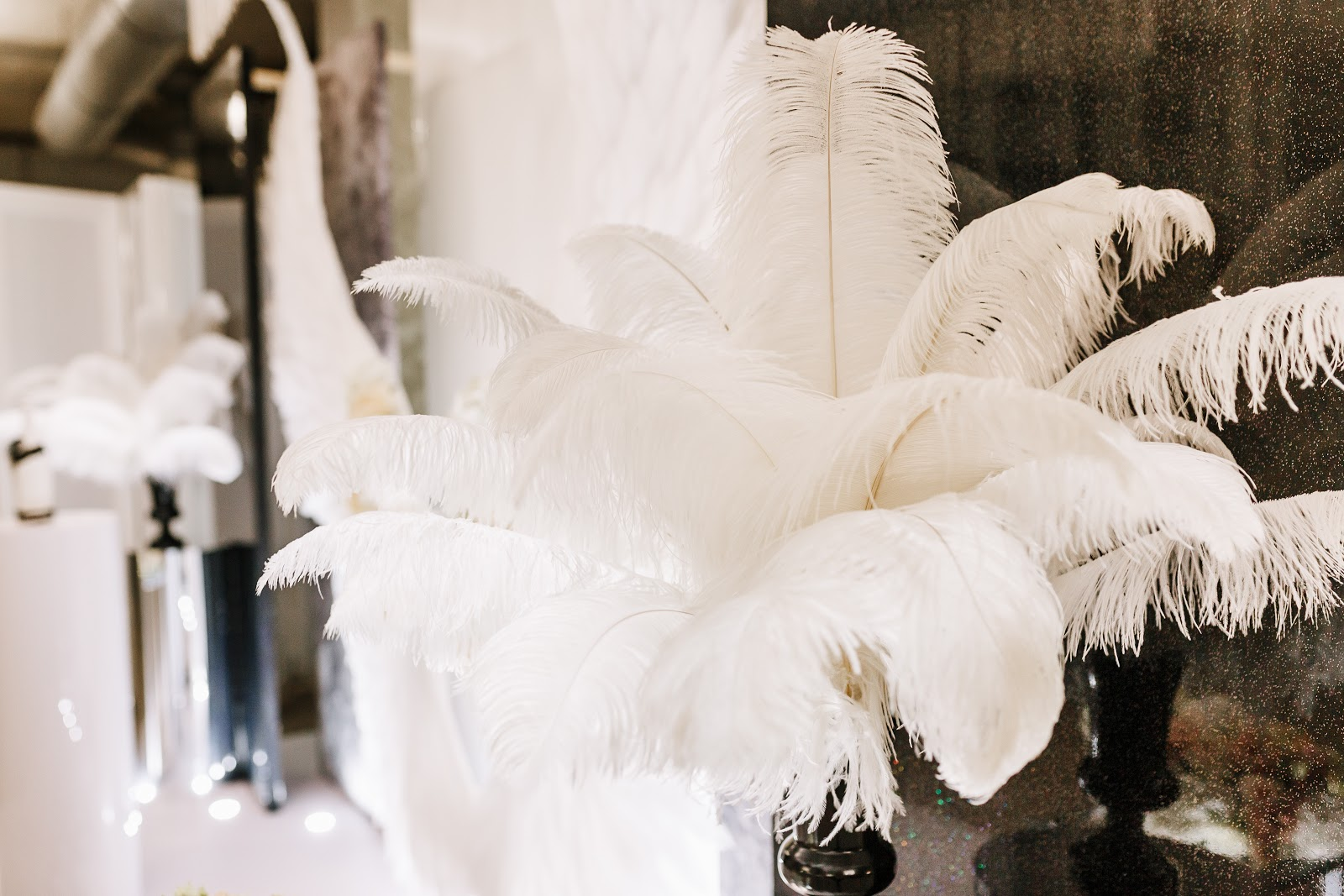 Great Gatsby party: White ostrich feathers