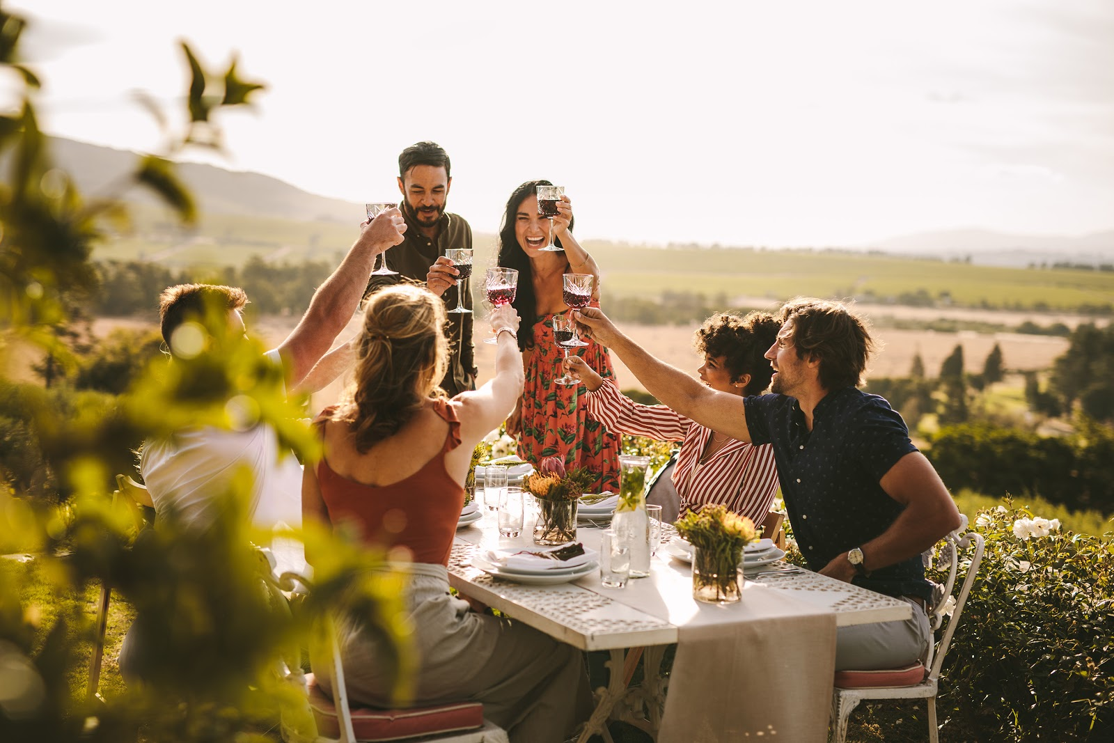 Engagement party ideas: Group of friends toasting wine during a party