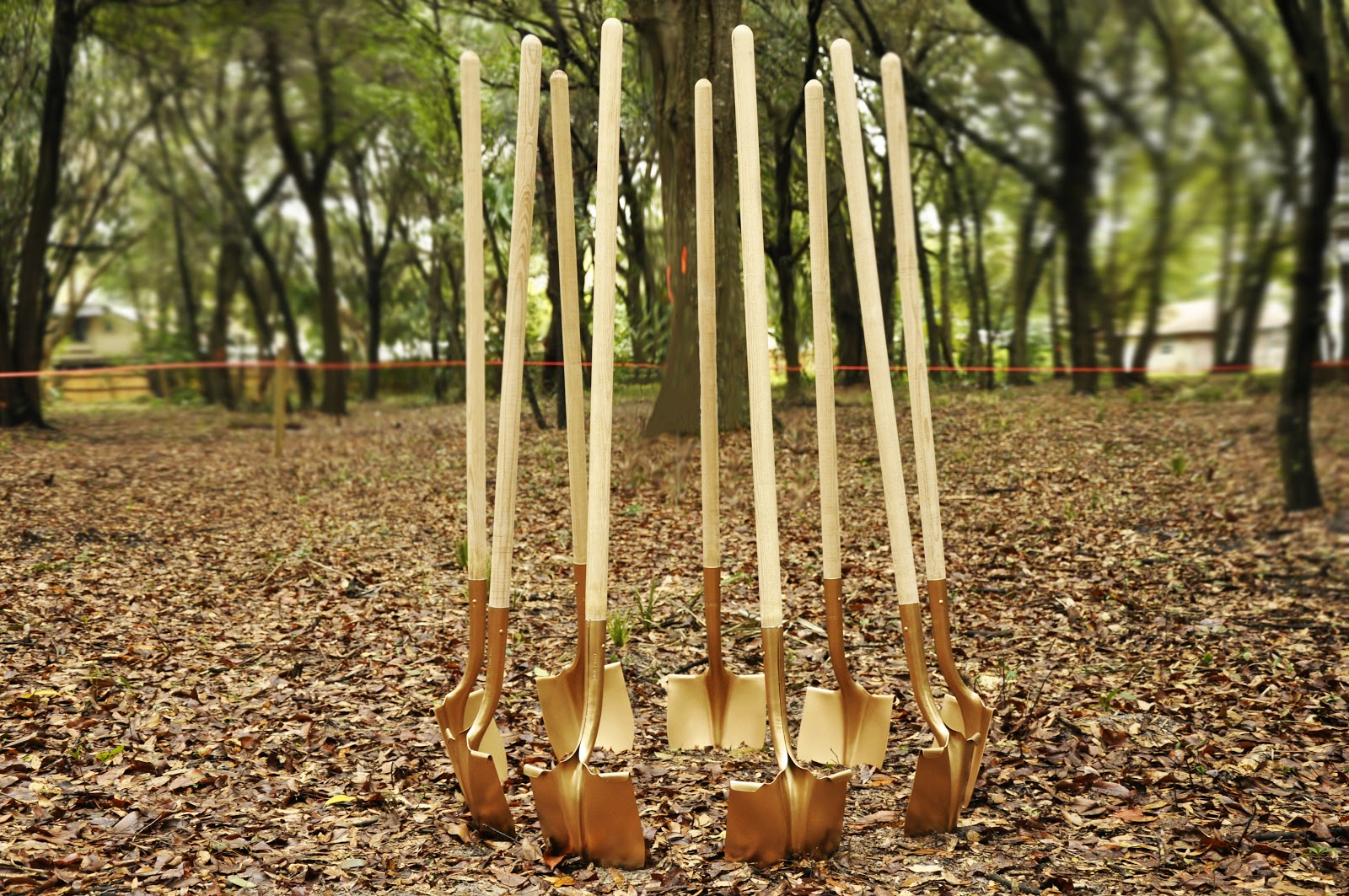 Several shovel placed in a circle on the ground