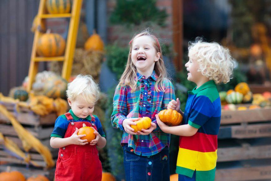 Kids at a pumpkin patch holding small pumpkins